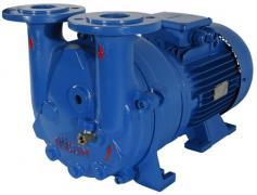 Вакуумный насос (78 куб.м./час) GMVP 200/055